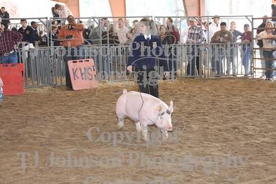 2009 Klein ISD Swine Show - Class 3