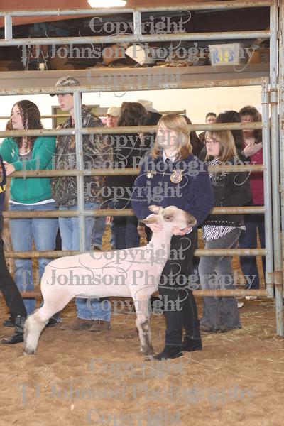 2010 KISD Class 1 Lamb Show