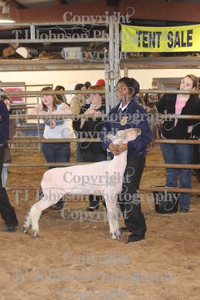 2010 KISD Class 2 Lamb