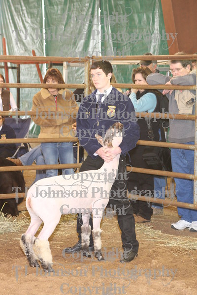 2010 KISD Class 3 Lamb