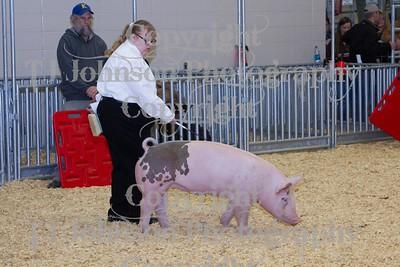 2014 KISD Livestock Show Swine Class 6