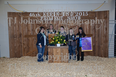 2015 Klien ISD Livestock Show Auction