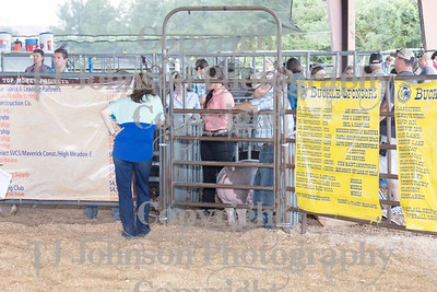 Magnolia ISD Livestock Show