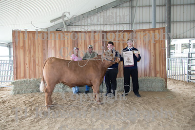 2017 - 60th Annual Sheldon FFA Livestock Show