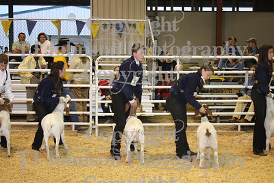2009 Spring Branch Goat Show
