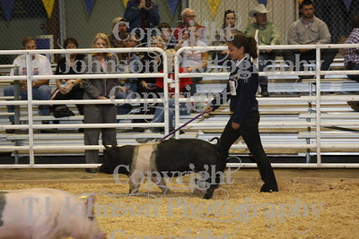 2009 Spring Branch Swine Show 2