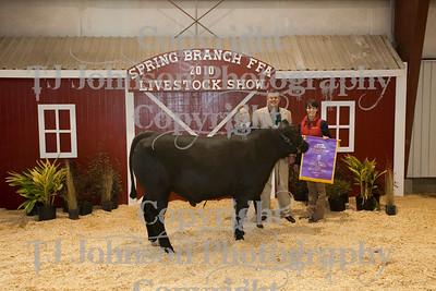 2010 Spring Branch FFA Auction 1