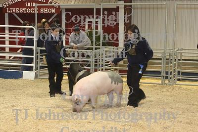 2010 Spring Branch FFA Class 2 Swine