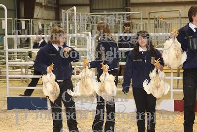 2010 Spring Branch FFA Poultry