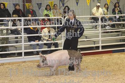 2010 Spring Branch Swine Class 1