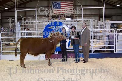 2014 Spring Branch FFA Livestock Show