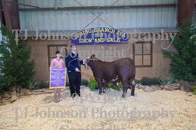 2016 Spring Branch FFA Auction 1