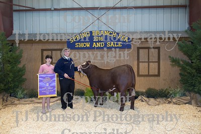 2016 Spring Branch FFA Auction