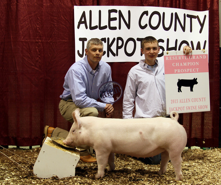 2013 Alen County Prospect - Reserve Grand Overall