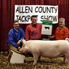 2013 Allen County - 5th Overall Gilt