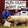2013 Allen County - Grand Gilt