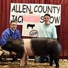 2013 Allen County - Reserve Grand Gilt