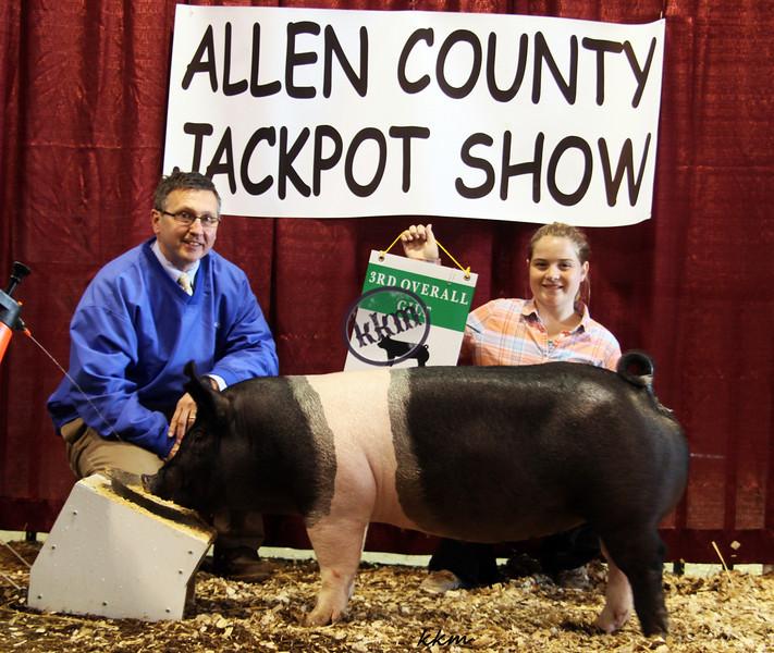 2013 Allen County - 3rd Overall Gilt