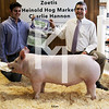 2013 Central Indiana Classic - 3rd Overall Barrow
