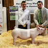 2013 Central Indiana Classic - 5th Overall Gilt