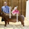 2013 Farmhouse - 4th Overall Barrow