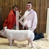 2013 Farmhouse - Grand Gilt