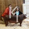 2013 Farmhouse - 4th Overall Gilt