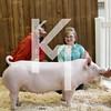 2013 Farmhouse - 3rd Overall Gilt