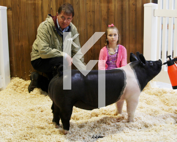 2013 Farmhouse - 3rd Overall Barrow