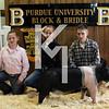 2013 Block & Bridle - 3rd Overall Barrow