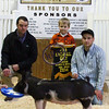4th Overall Gilt 2014 Purdue Block & Bridle
