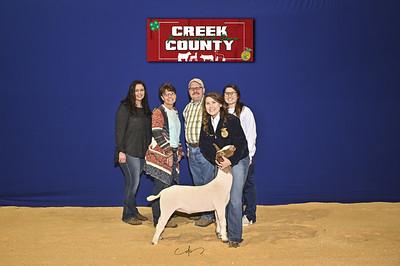 DO20-Creek-0399