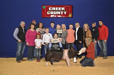 DO20-Creek-0431