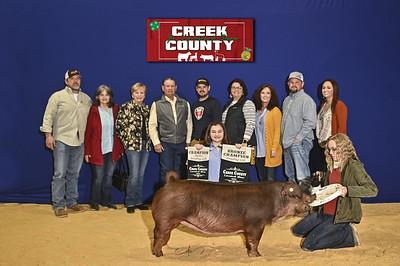 DO20-Creek-0408