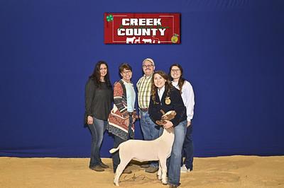 DO20-Creek-0400
