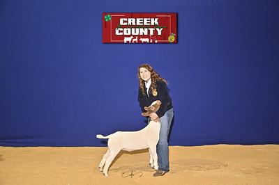 DO20-Creek-0397