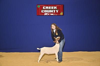 DO20-Creek-0398