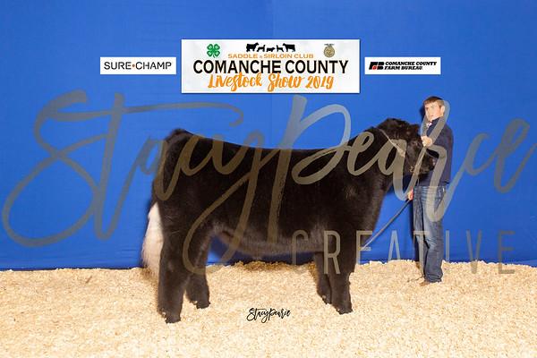 SPC19_COMCO-S_8710
