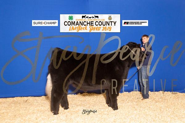SPC19_COMCO-S_8709