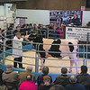 Woodmarsh Minder from M. and J. C. Gould of Bomere Heath, Shrewsbury, Shropshire selling for 4,000 gns.