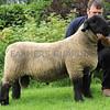 Carlisle Suffolk 2,200 (2)
