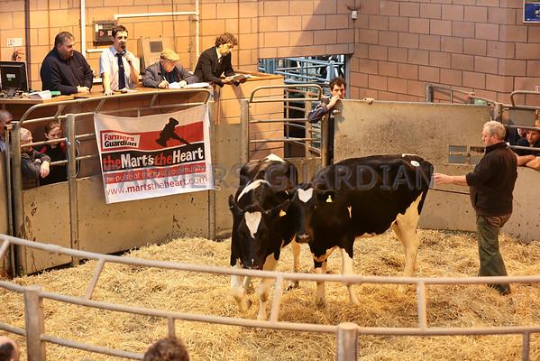 Carmarthen dairy sale