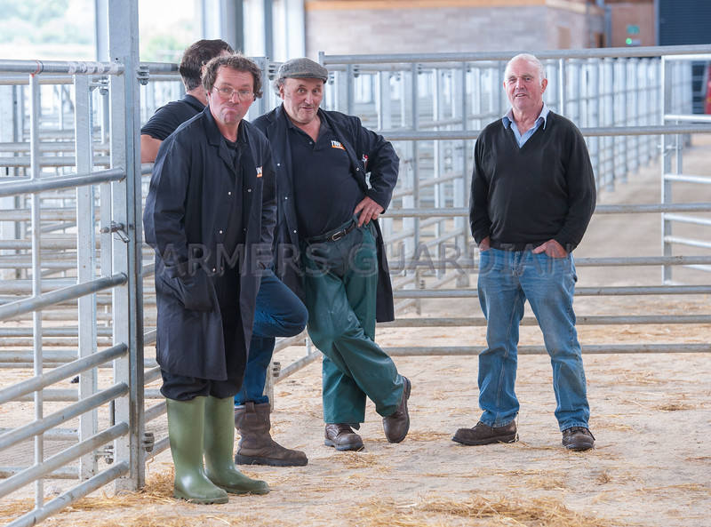 The North West Texel Breeders' Club show and sale of Texel sheep at Kendal Agricultural Centre.