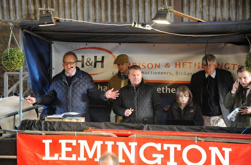 Lemington 9