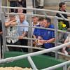 Sedgemoor Auction Centre Dairy 16/07/13