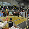 SALERS SALE Castle Douglas 021113