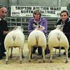 Skipton Lamb champs