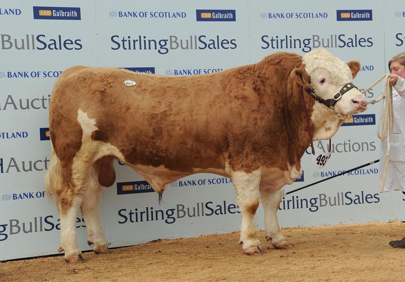 Stirling Simm 8,500