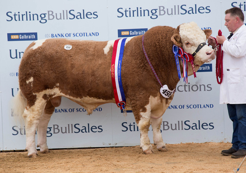 Stirling Simm Res champ