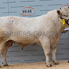 Caylors Lincoln - 10,000gns